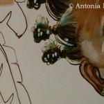 Antonia NEYRINS